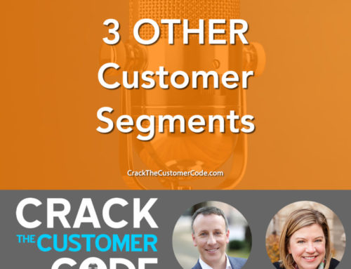251: (Tip) 3 OTHER Customer Segments