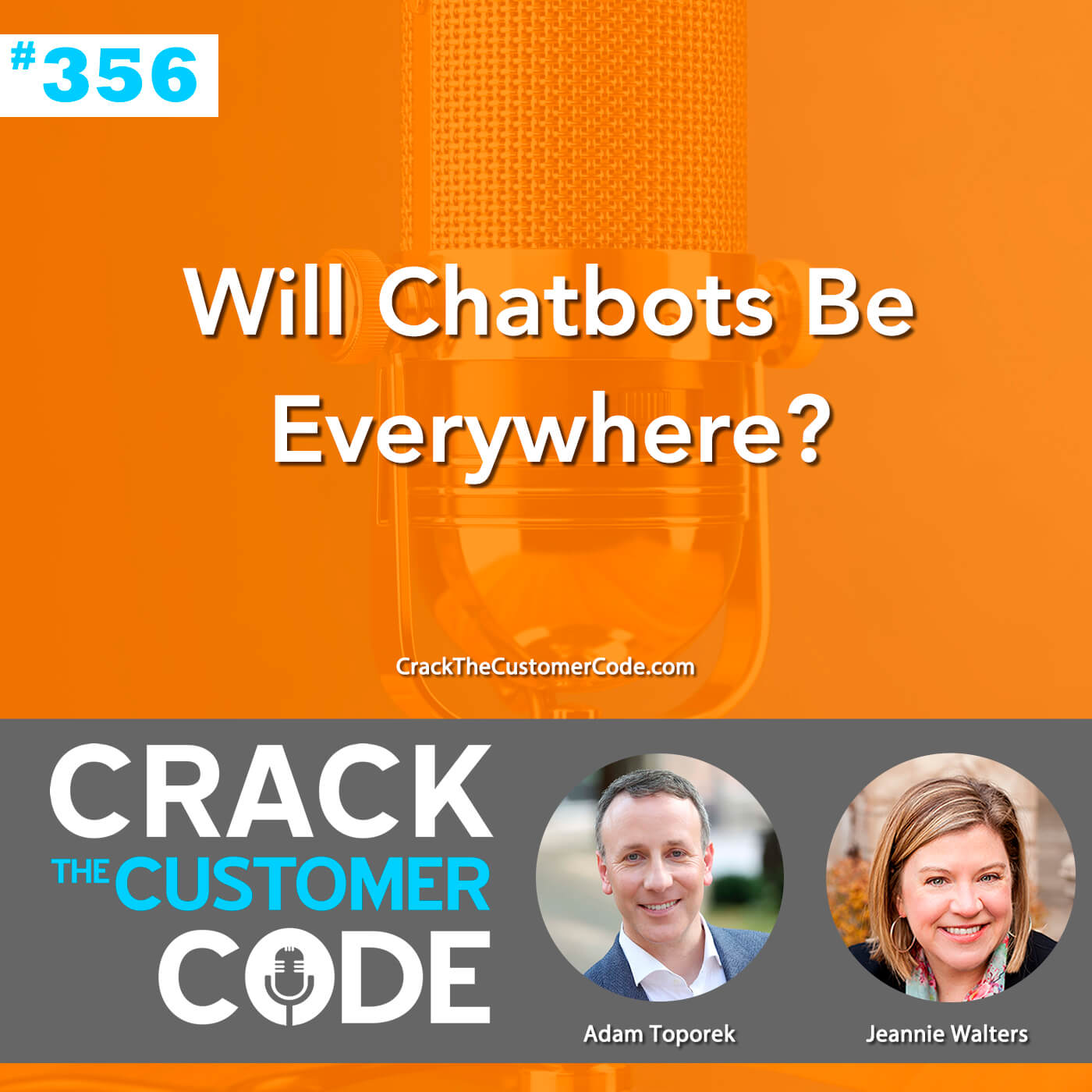 356: Will Chatbots Be Everywhere?